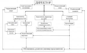 структура МБОУДО ДЮСШ